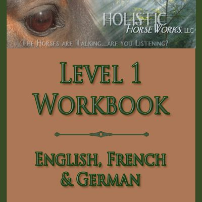 """DVD """"Equine Cranial Sacral Energy Work"""" (formerly """"Horses With Headaches"""") (French Subtitles)"""