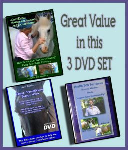 3 DVD SET - SPECIAL DISCOUNT! -partnered with Magic Hands