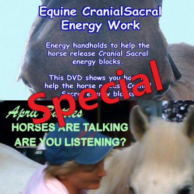 "Watch Instantly Special -my two top selling DVDs + Free ""Distance Communication"" Report"