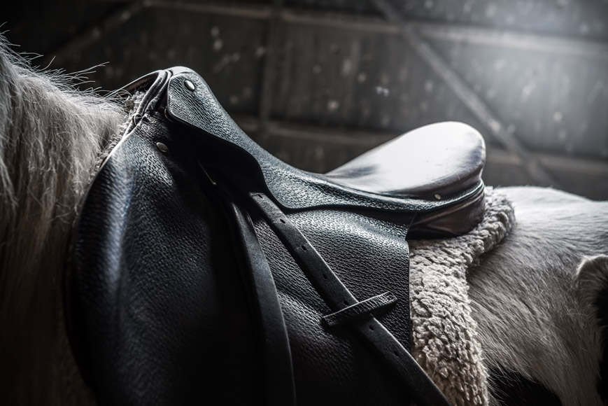 Improper Saddle Fit Can Have Far-Reaching Effects on Your Horse!
